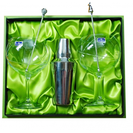 Two-glass, stirrers and shaker Gin and Tonic set
