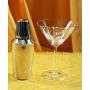 Martini Bohemia Gastro set. Six glasses and shaker (petals decoration)