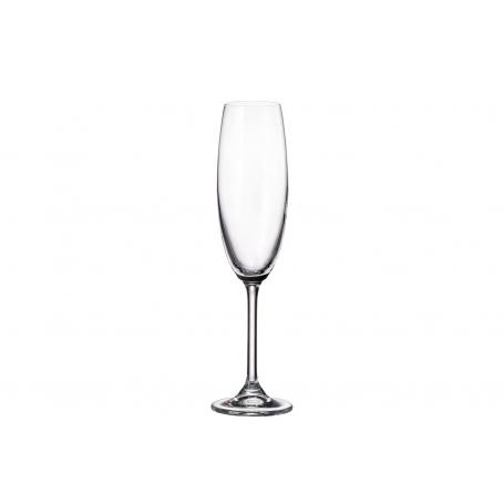 Bohemian champagne glass Gastro