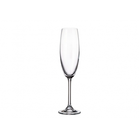 Copa de champán Gastro 220