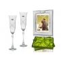 Fuchsia champagne flutes and Silver photo frame for wedding or anniversary gift