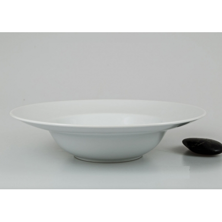 copy of White dinner plate. Coupe design.